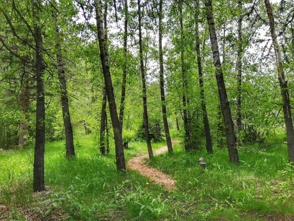 Romantic RiverSong Hiking