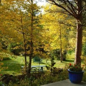 fall foliage at RiverSong