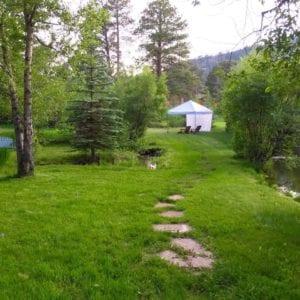 steppnig stones by the ponds