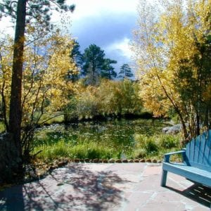 pond at RiverSong in fall