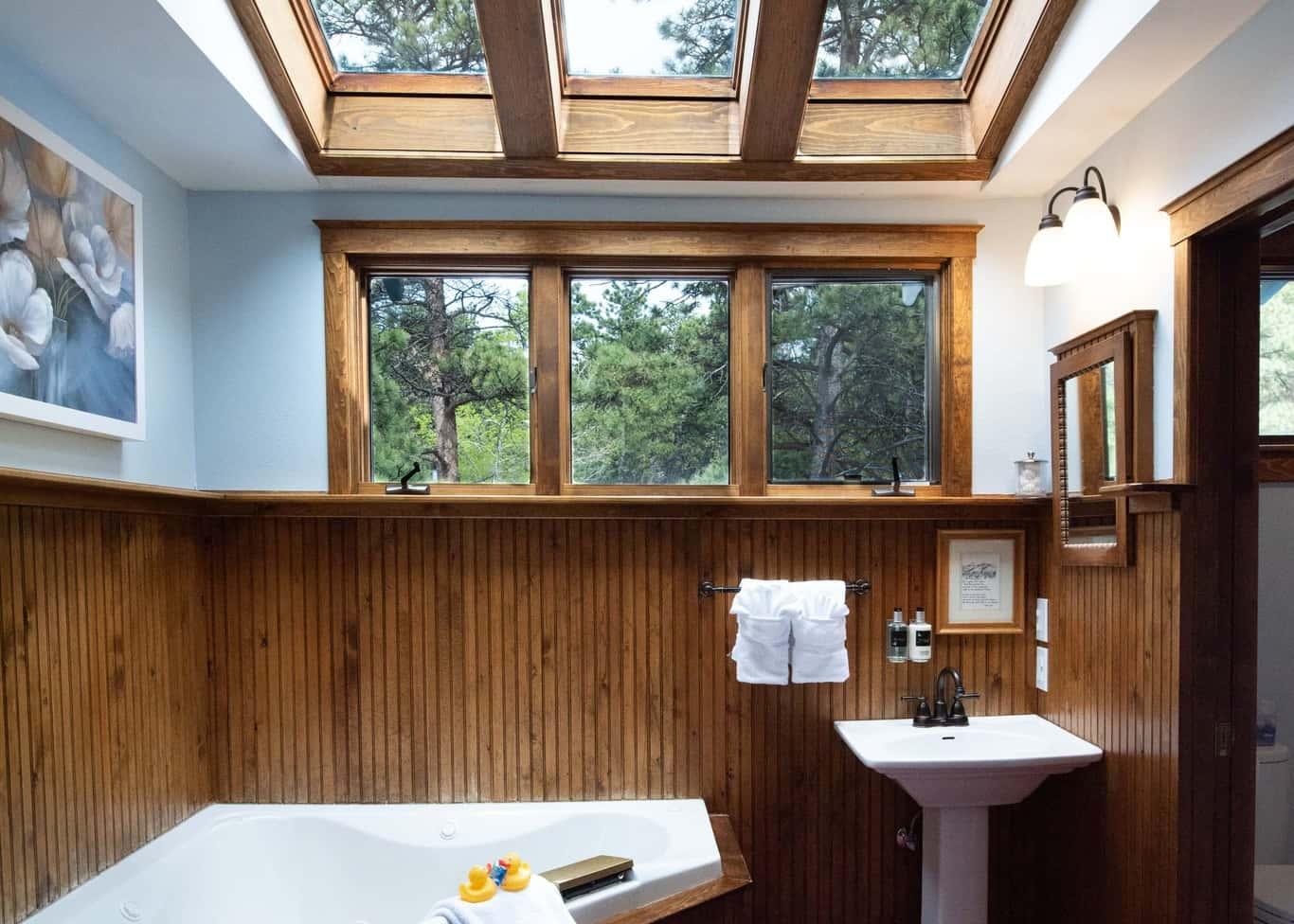 bathroom with skylight and windows