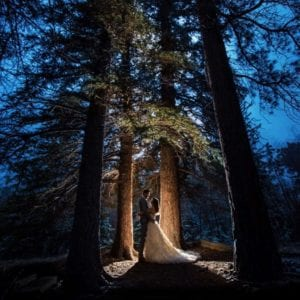 wedding couple in night forest canopy